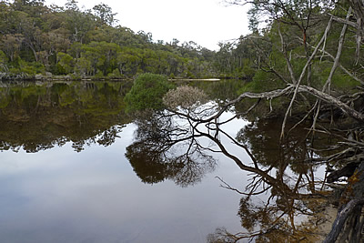 Peaceful waters -  Gippsland High Country Tours